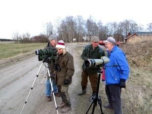 Fågel- och vildsvinsskådare vid Källmo