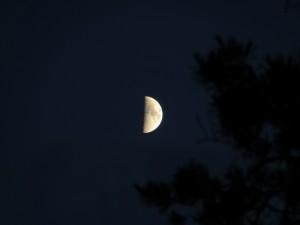 Måne över Gällen